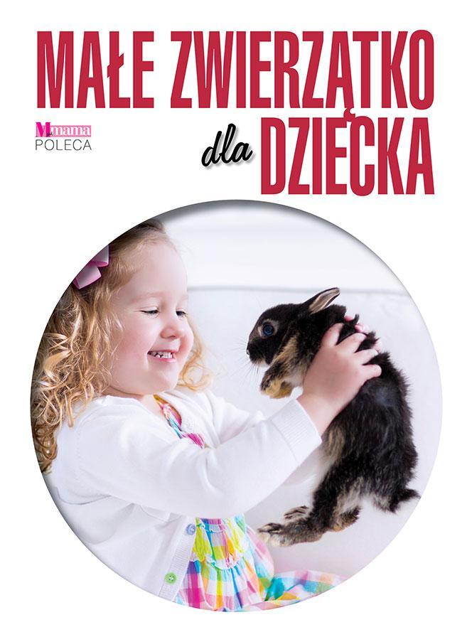 Małe zwierzątko dla dziecka